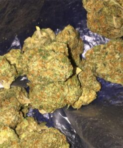 holy grail kush for sale