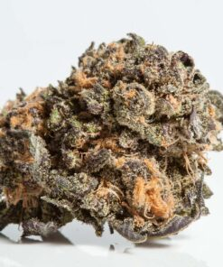 buy grand daddy purple kush online dispensary